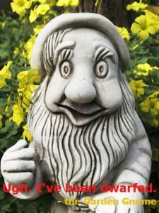 garden gnome, not a dwarf