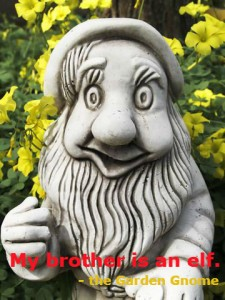 garden gnome brother elf
